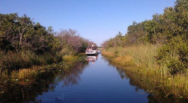 Sehenswürdigkeiten Everglades Miami