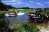 Everglades Tour Miami